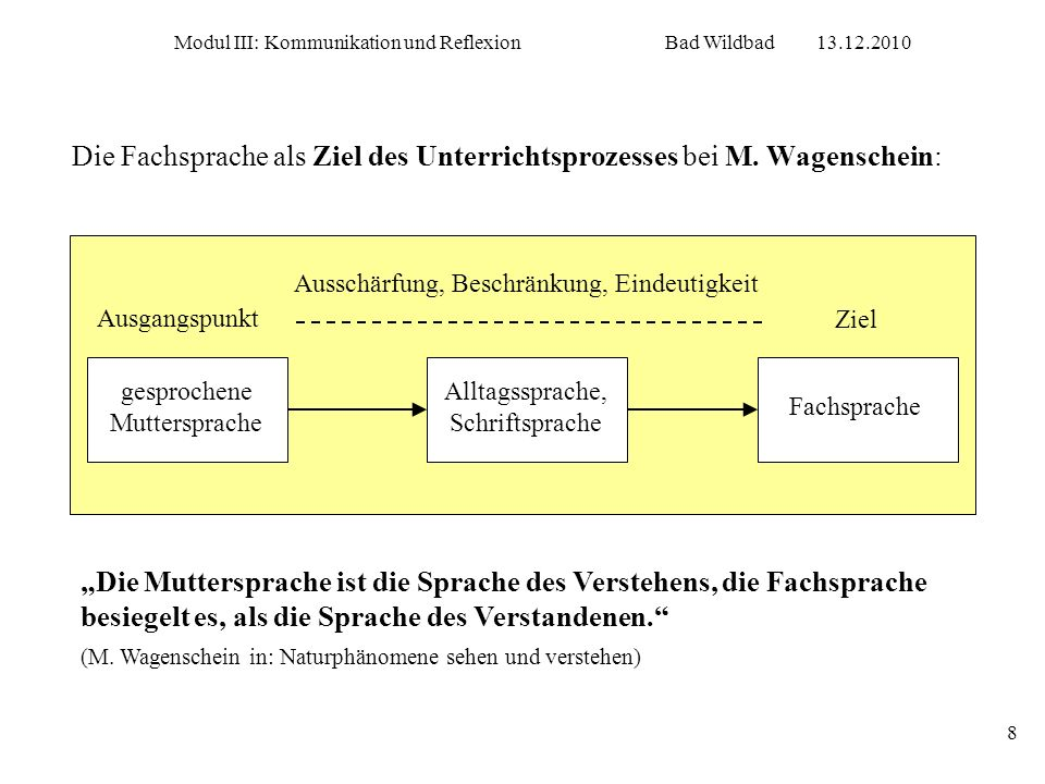 Die Fachsprache als Ziel des Unterrichtsprozesses bei M. Wagenschein: