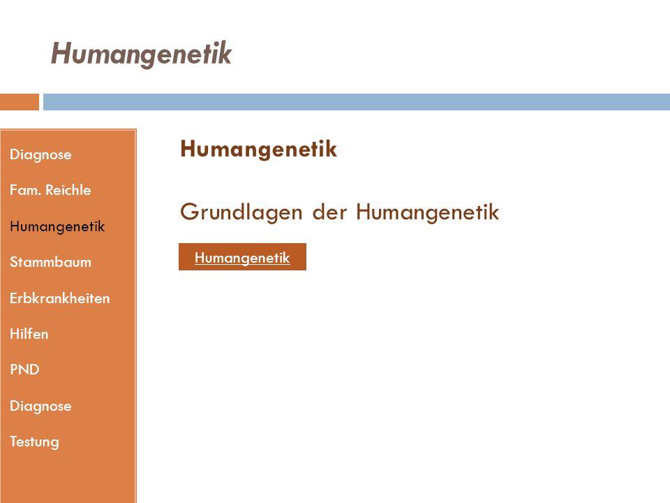 Humangenetik Humangenetik Grundlagen der Humangenetik Diagnose