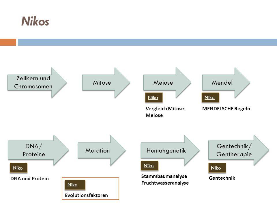 Nikos Zellkern und Chromosomen Mitose Meiose Mendel DNA/ Proteine