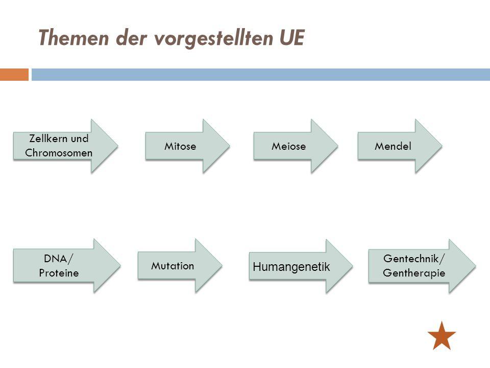 Themen der vorgestellten UE