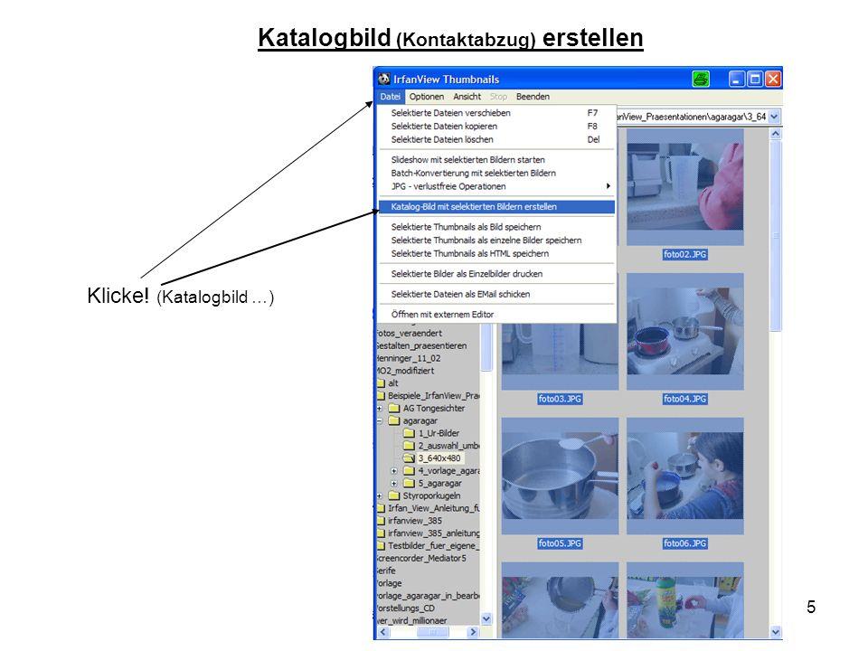 Katalogbild (Kontaktabzug) erstellen