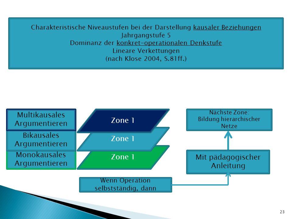 Multikausales Argumentieren Zone 1