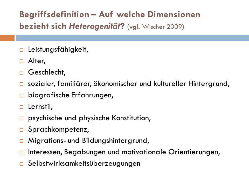 Begriffsdefinition – Auf welche Dimensionen bezieht sich Heterogenität