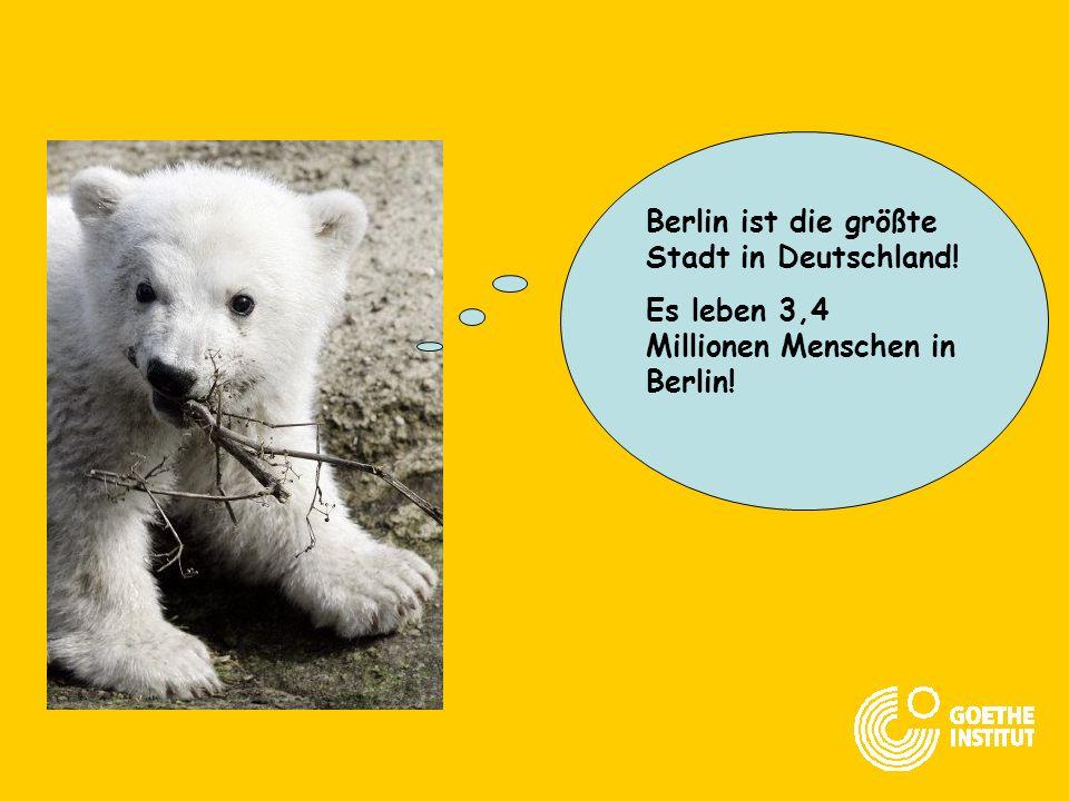 Berlin ist die größte Stadt in Deutschland!