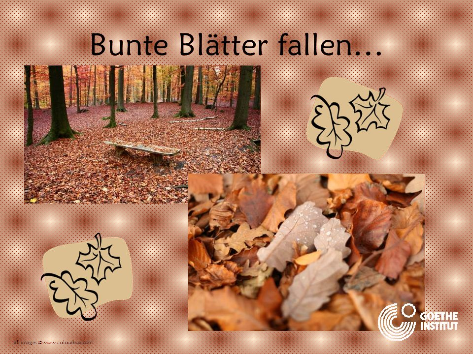 Bunte Blätter fallen… all images ©www.colourbox.com