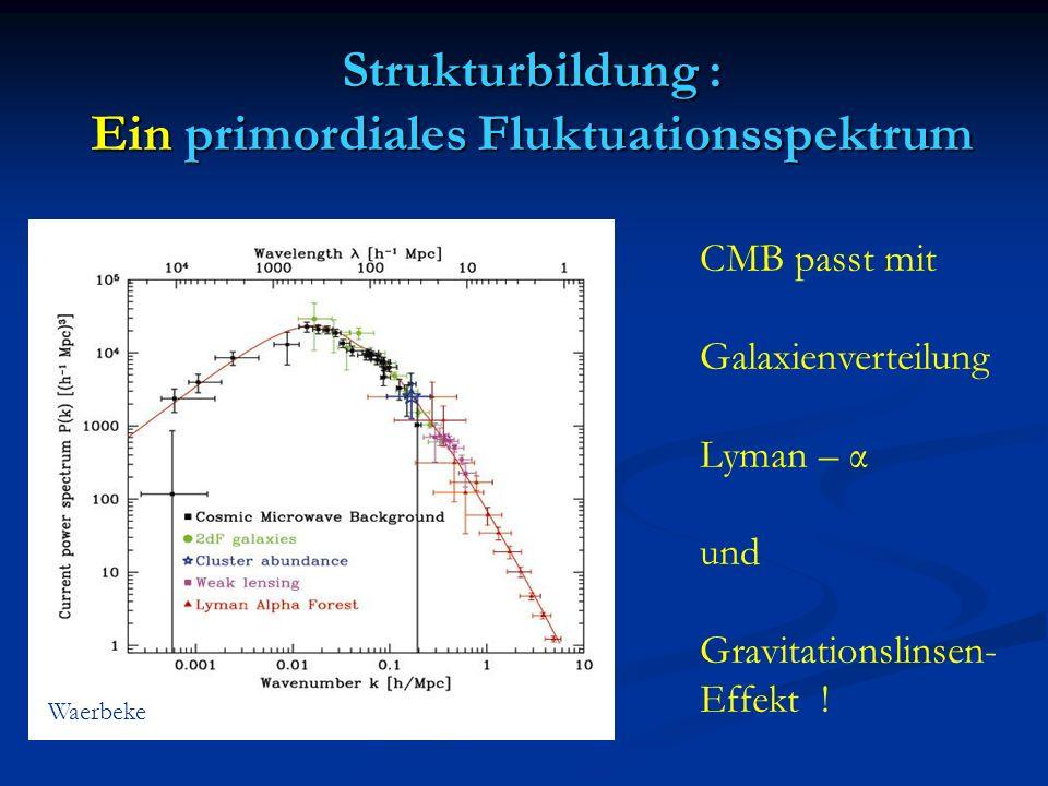 Strukturbildung : Ein primordiales Fluktuationsspektrum