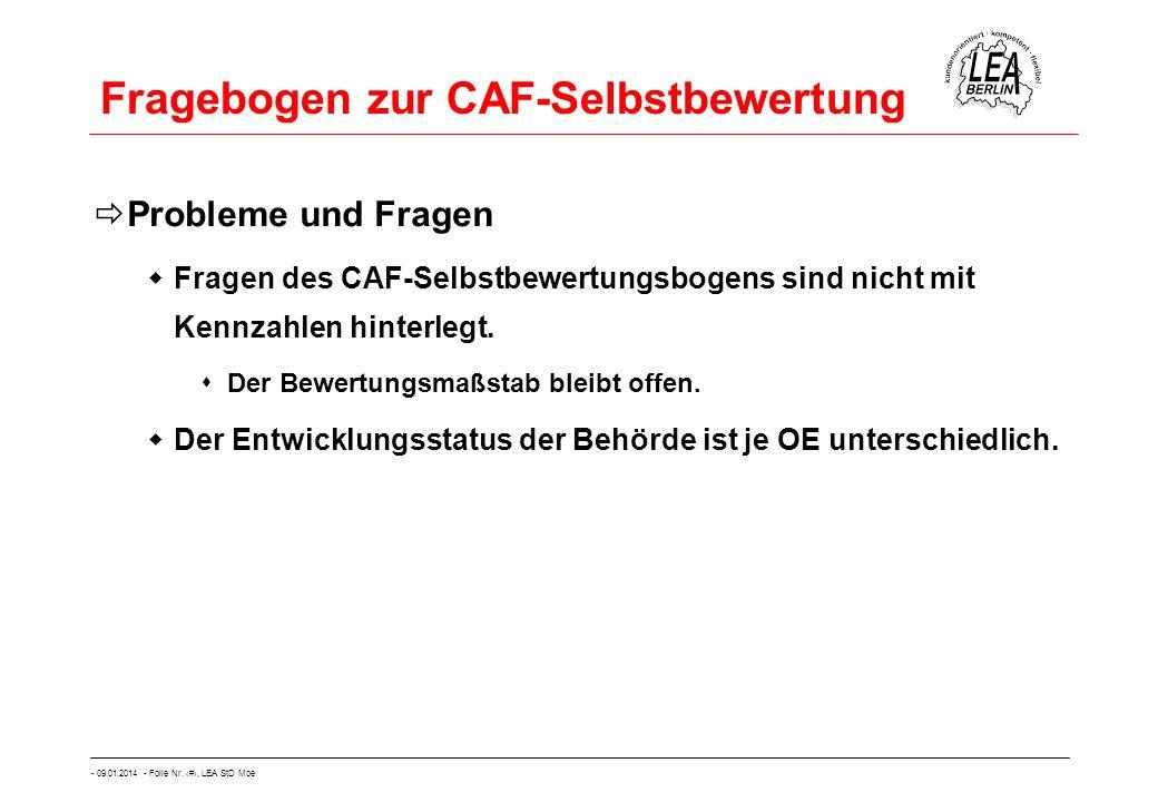 Fragebogen zur CAF-Selbstbewertung