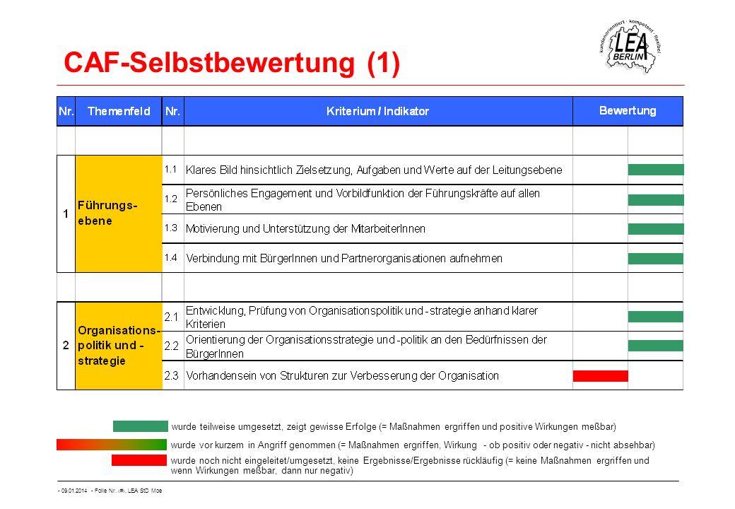 CAF-Selbstbewertung (1)