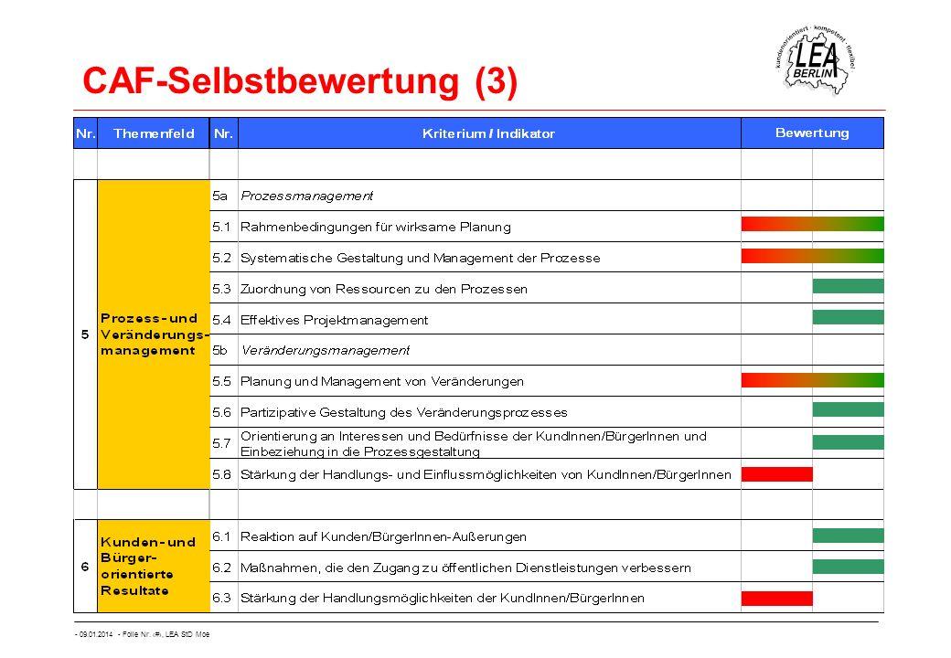 CAF-Selbstbewertung (3)