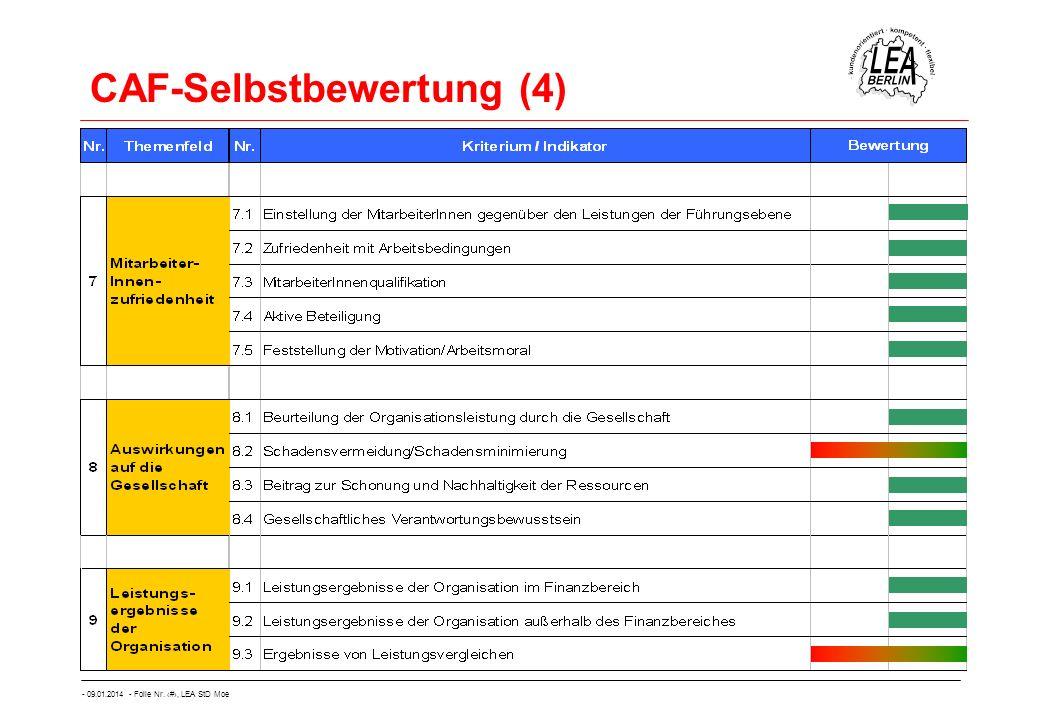 CAF-Selbstbewertung (4)