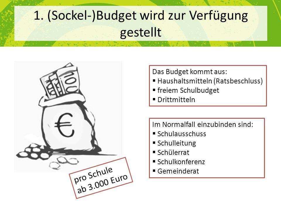 1. (Sockel-)Budget wird zur Verfügung gestellt