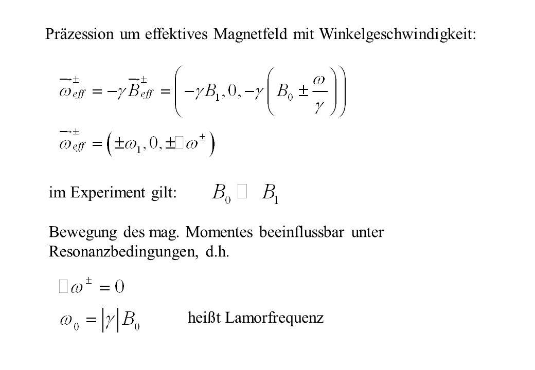 Präzession um effektives Magnetfeld mit Winkelgeschwindigkeit: