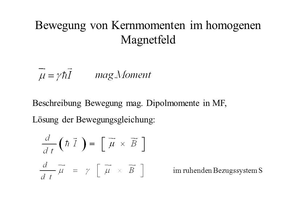 Bewegung von Kernmomenten im homogenen Magnetfeld