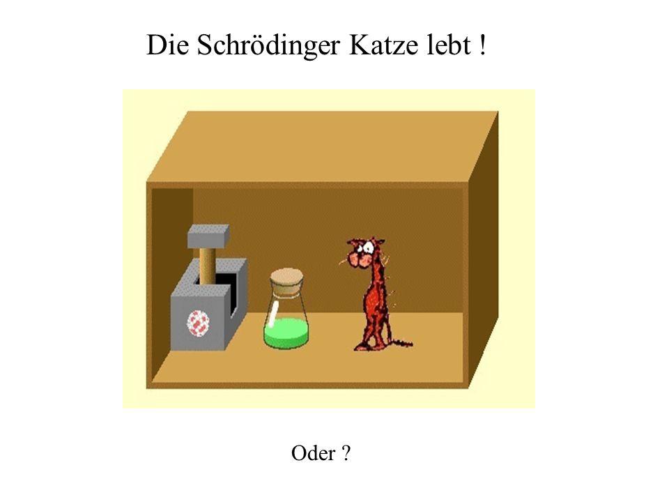 Die Schrödinger Katze lebt !