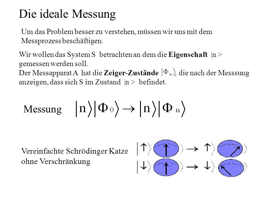 Die ideale Messung Messung Vereinfachte Schrödinger Katze