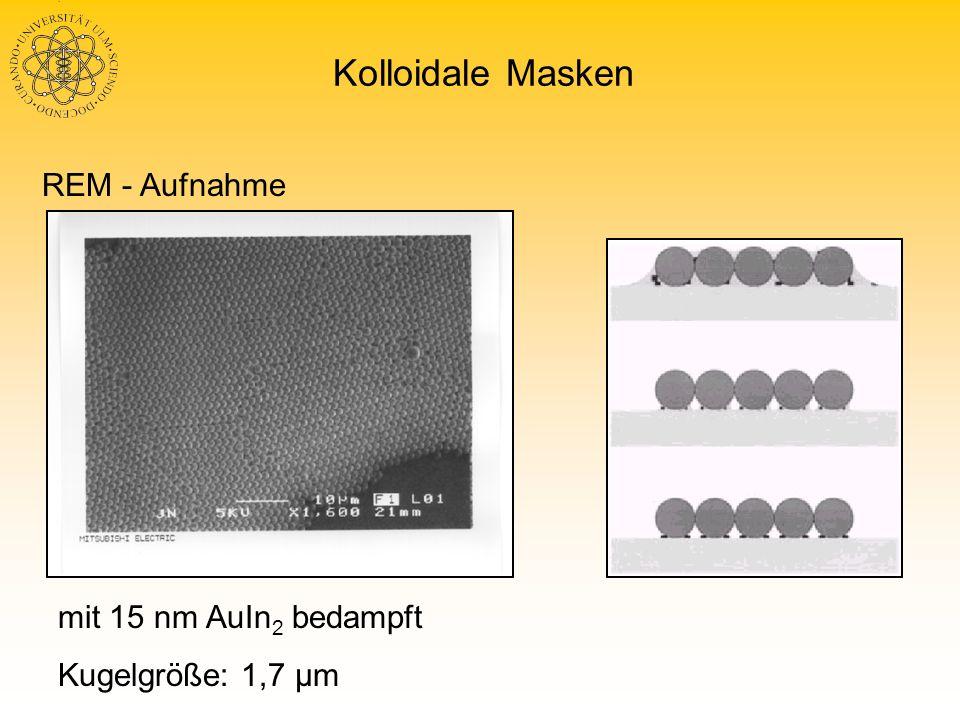 Kolloidale Masken REM - Aufnahme mit 15 nm AuIn2 bedampft