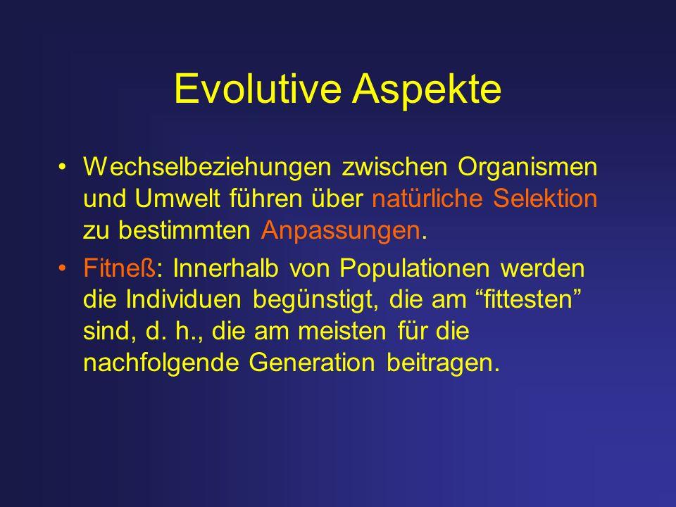 Evolutive Aspekte Wechselbeziehungen zwischen Organismen und Umwelt führen über natürliche Selektion zu bestimmten Anpassungen.