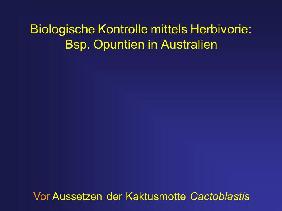 Biologische Kontrolle mittels Herbivorie: Bsp. Opuntien in Australien