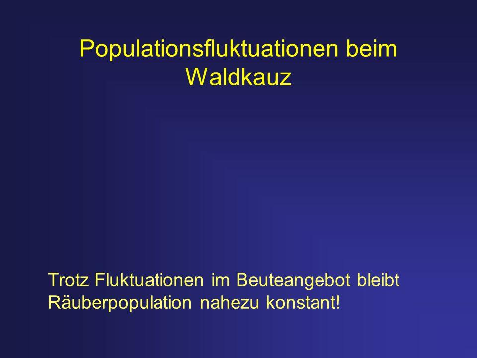 Populationsfluktuationen beim Waldkauz