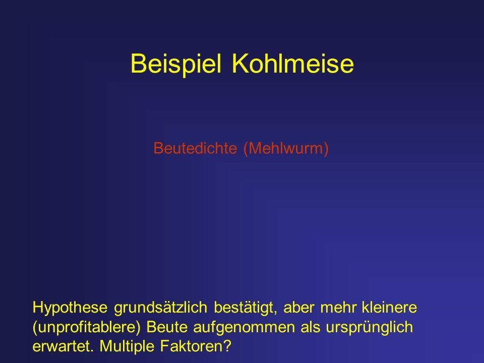 Beispiel Kohlmeise Beutedichte (Mehlwurm)