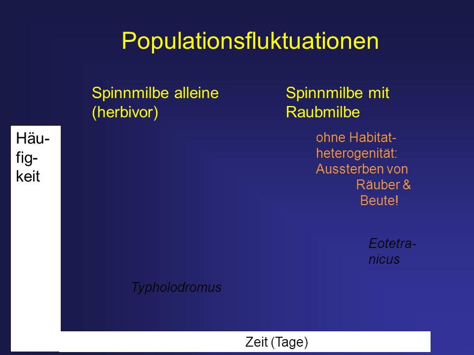 Populationsfluktuationen