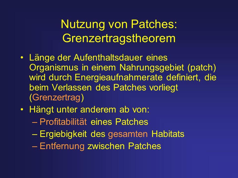Nutzung von Patches: Grenzertragstheorem