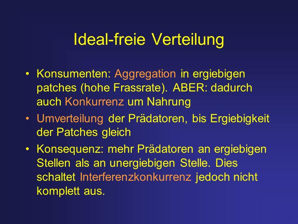 Ideal-freie Verteilung