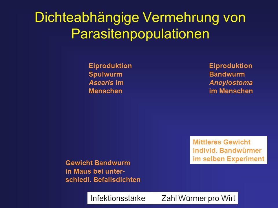 Dichteabhängige Vermehrung von Parasitenpopulationen