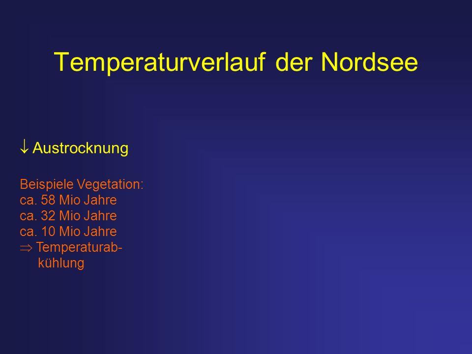 Temperaturverlauf der Nordsee