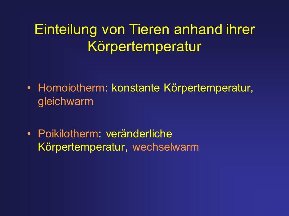 Einteilung von Tieren anhand ihrer Körpertemperatur