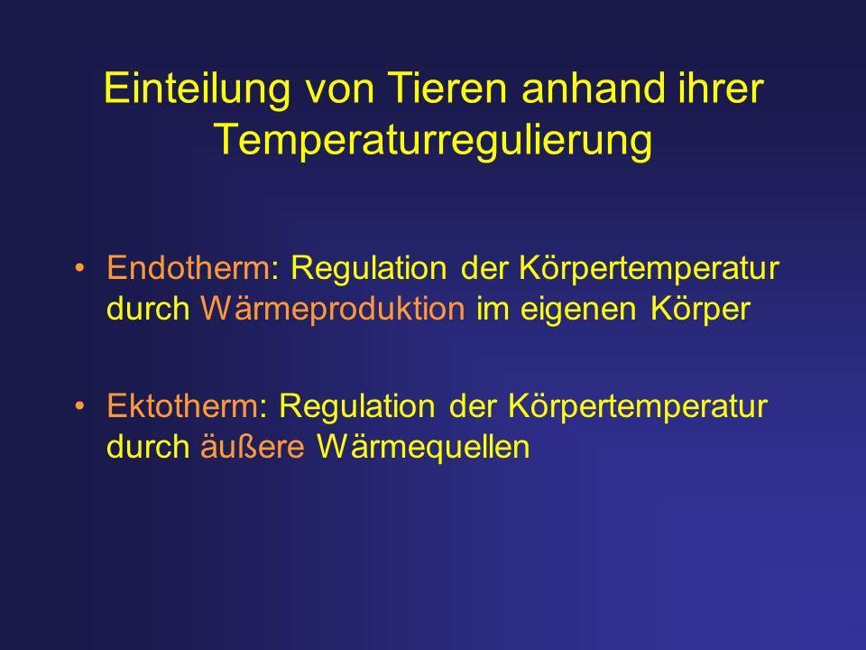 Einteilung von Tieren anhand ihrer Temperaturregulierung