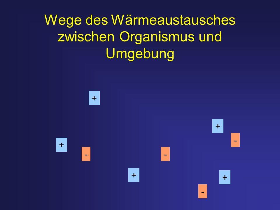 Wege des Wärmeaustausches zwischen Organismus und Umgebung