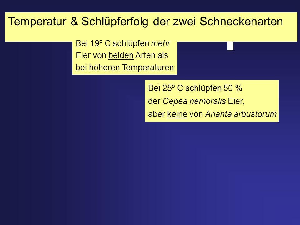 Temperatur & Schlüpferfolg der zwei Schneckenarten