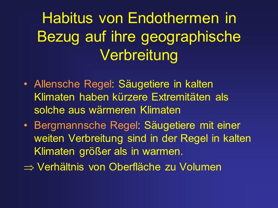 Habitus von Endothermen in Bezug auf ihre geographische Verbreitung