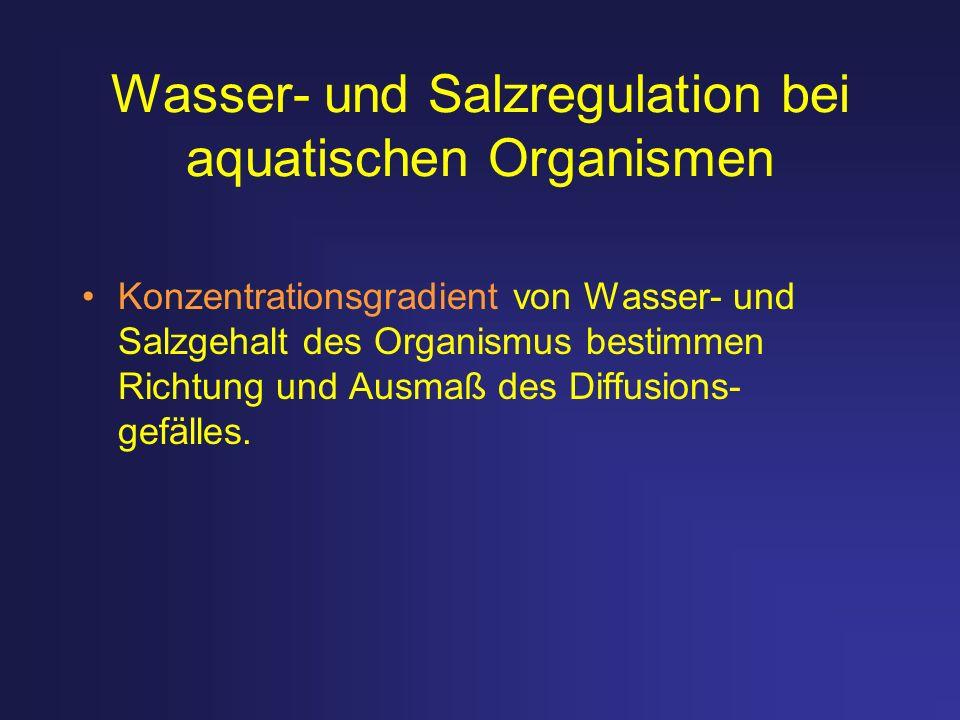 Wasser- und Salzregulation bei aquatischen Organismen