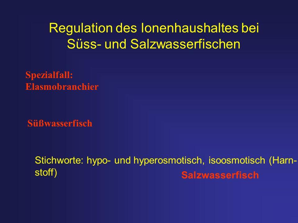Regulation des Ionenhaushaltes bei Süss- und Salzwasserfischen