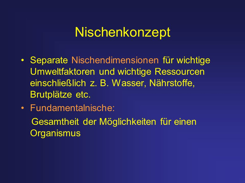 Nischenkonzept