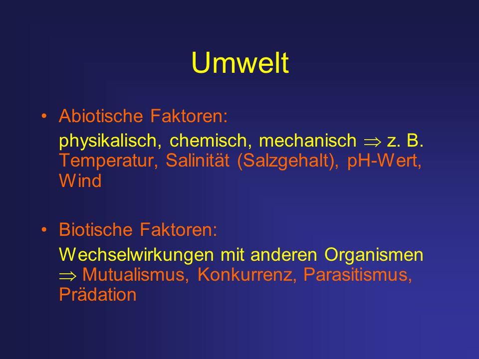 Umwelt Abiotische Faktoren: