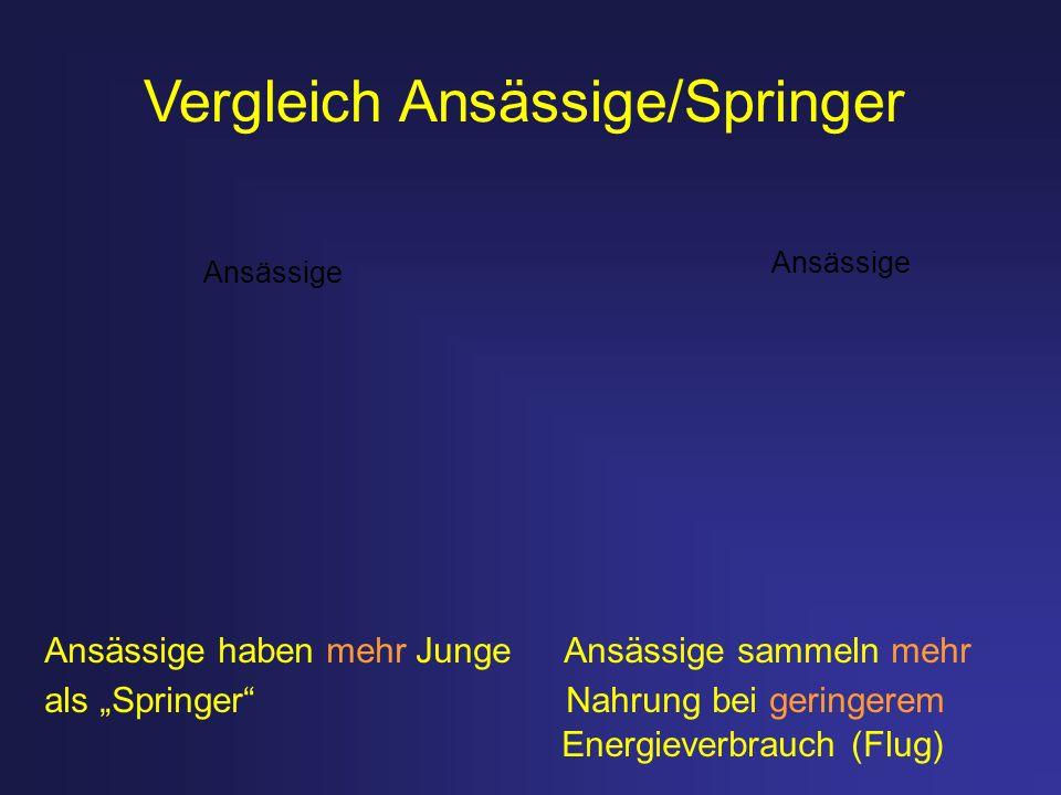 Vergleich Ansässige/Springer