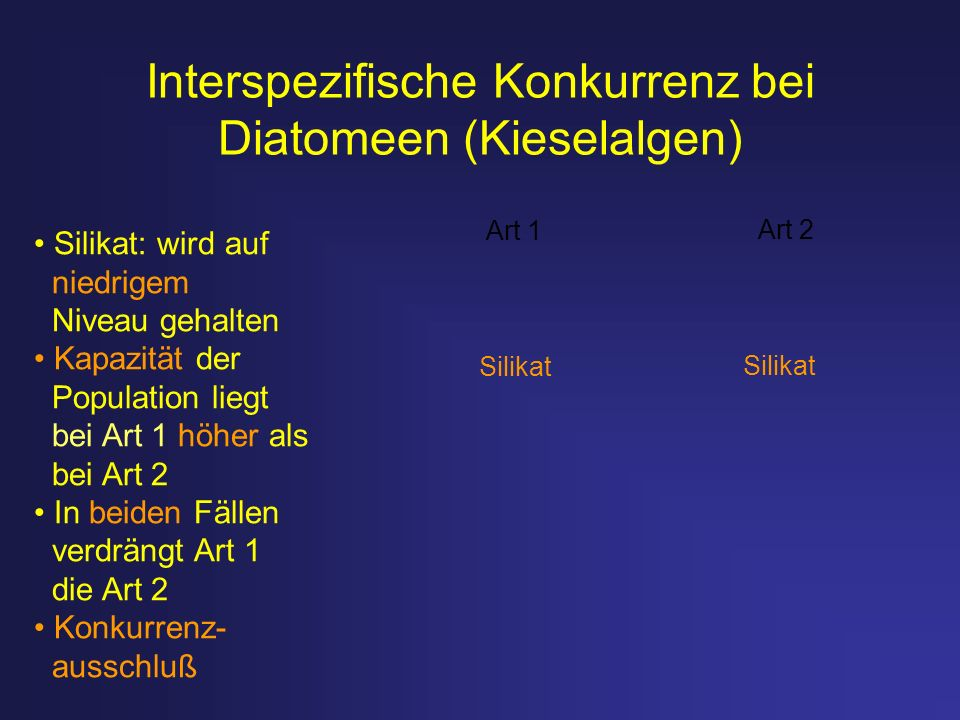 Interspezifische Konkurrenz bei Diatomeen (Kieselalgen)