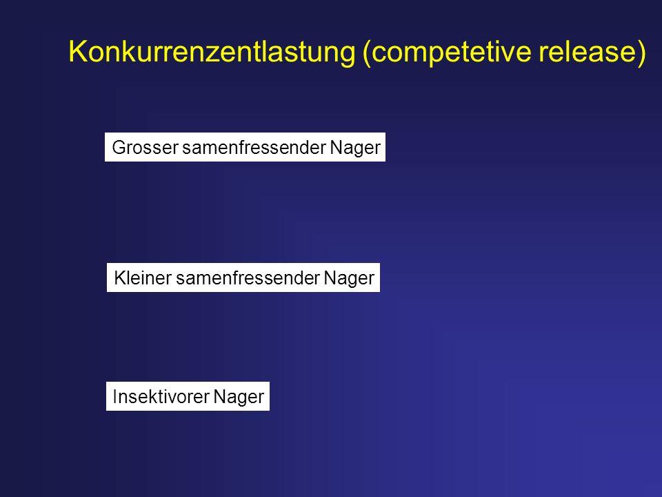 Konkurrenzentlastung (competetive release)