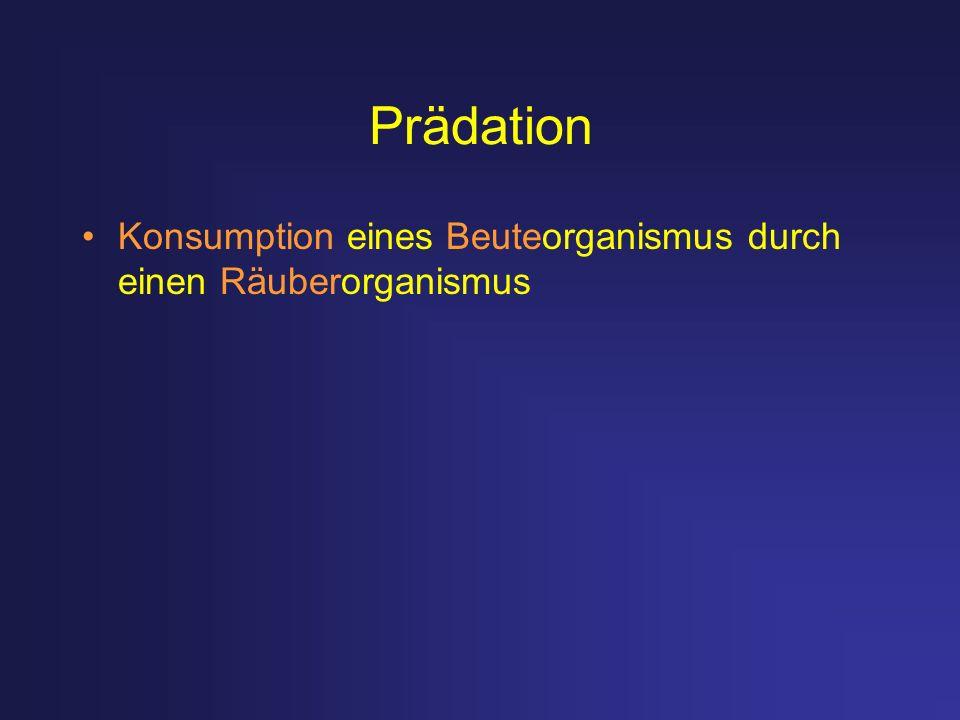 Prädation Konsumption eines Beuteorganismus durch einen Räuberorganismus