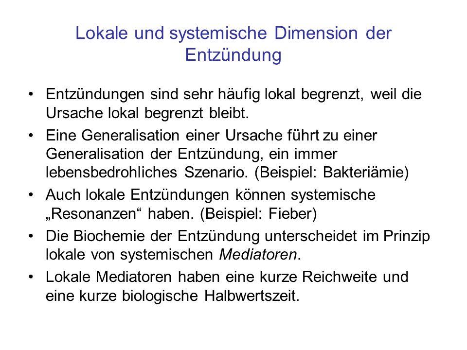 Lokale und systemische Dimension der Entzündung