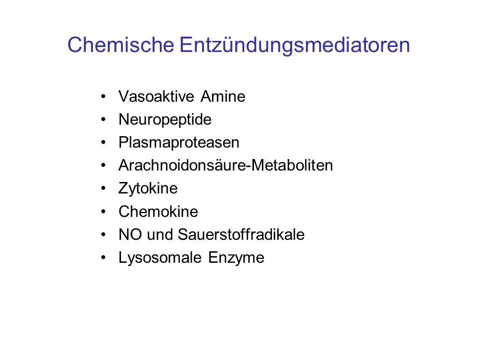 Chemische Entzündungsmediatoren