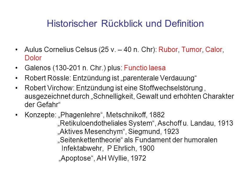 Historischer Rückblick und Definition
