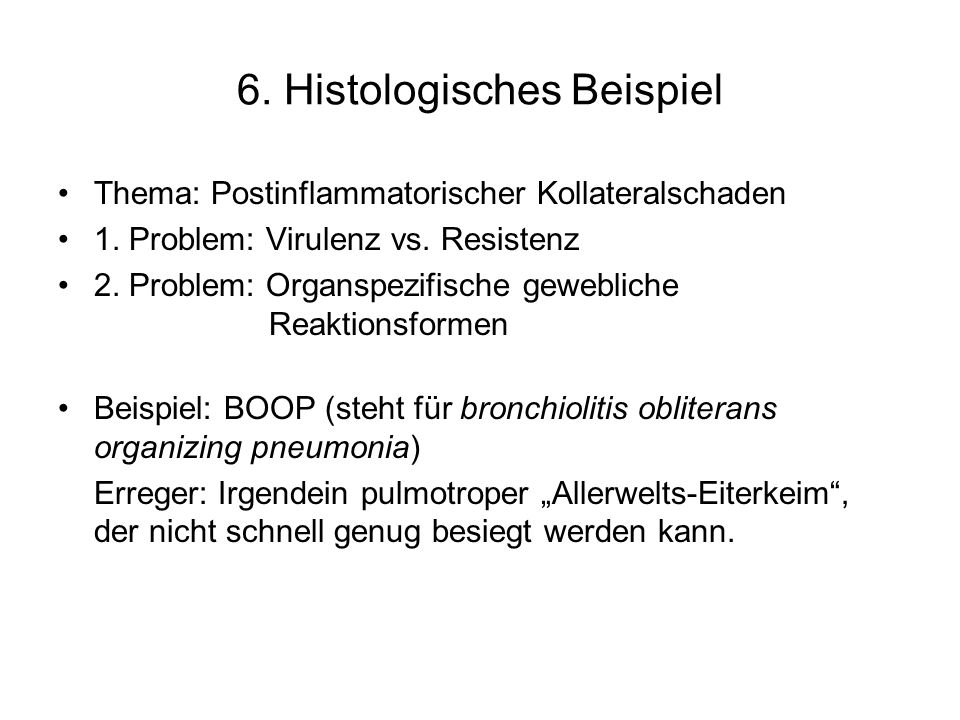 6. Histologisches Beispiel