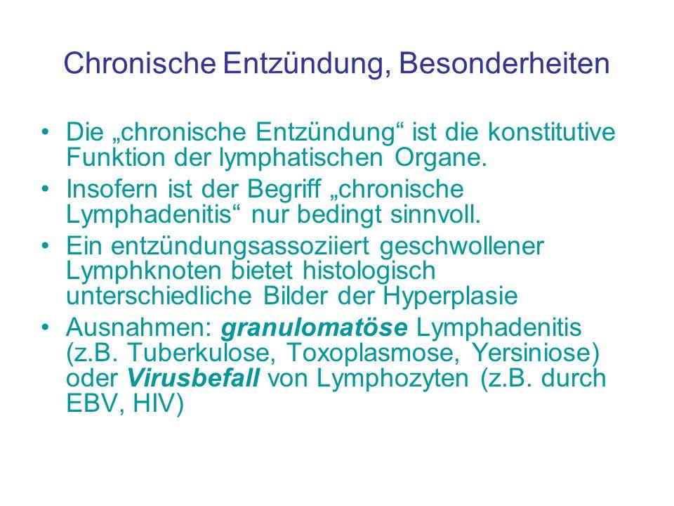 Chronische Entzündung, Besonderheiten