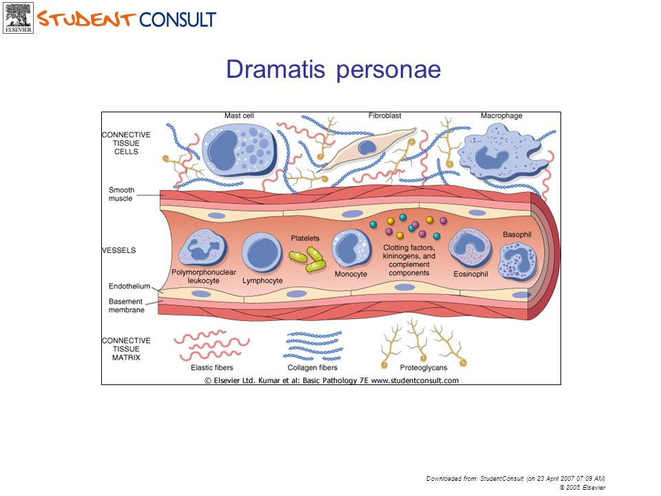 Dramatis personae Downloaded from: StudentConsult (on 23 April 2007 07:09 AM) © 2005 Elsevier