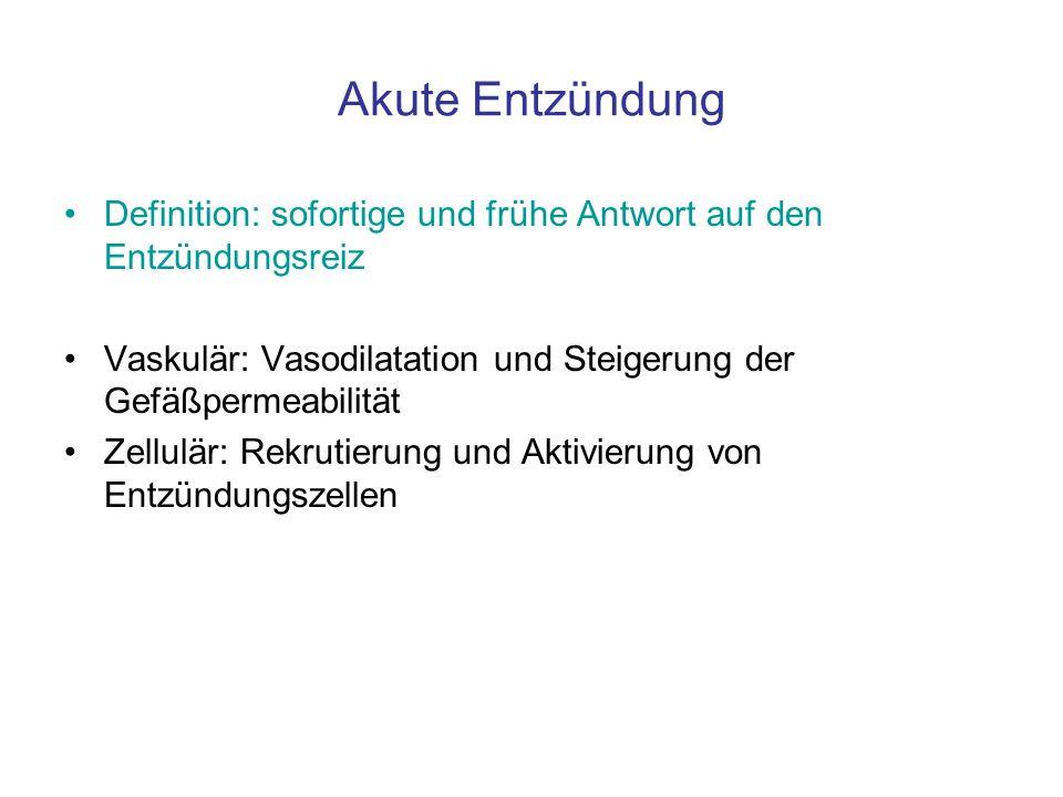 Akute Entzündung Definition: sofortige und frühe Antwort auf den Entzündungsreiz. Vaskulär: Vasodilatation und Steigerung der Gefäßpermeabilität.