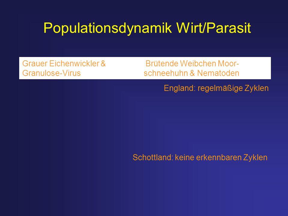 Populationsdynamik Wirt/Parasit